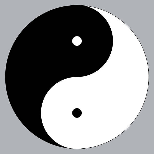 Digital Art - Yinyang B by Jim Dollar