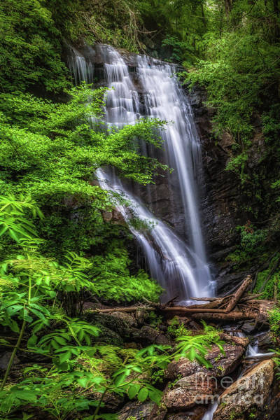 Photograph - York Creek Falls - Georgia by Nick Zelinsky