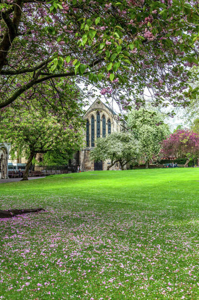 Wall Art - Photograph - York Minster Library In Spring by W Chris Fooshee