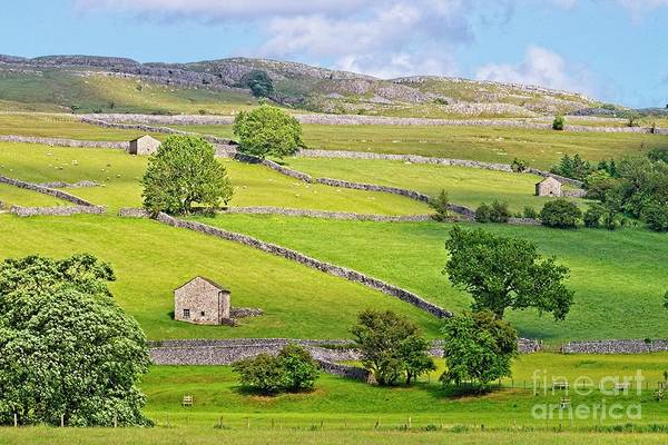 Photograph - Yorkshire Dales by Martyn Arnold