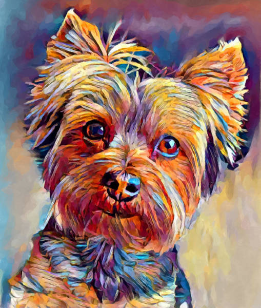 Wall Art - Painting - Yorkshire Terrier 2 by Chris Butler