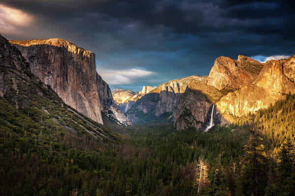 Wall Art - Photograph - Yosemite Evening Light by Andrew Soundarajan
