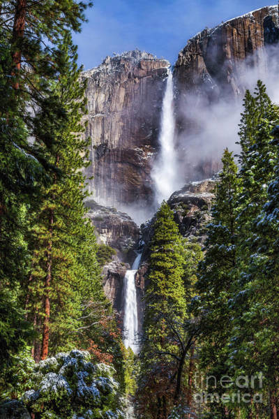 Photograph - Yosemite Falls by Anthony Michael Bonafede