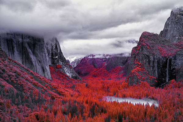 Wall Art - Photograph - Yosemite In Red by Jon Glaser