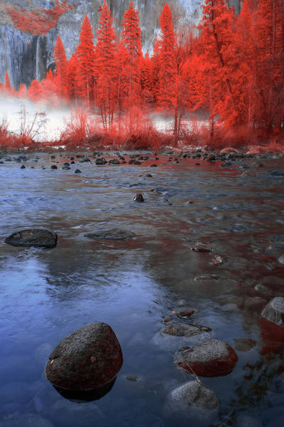 Wall Art - Photograph - Yosemite River In Red by Jon Glaser