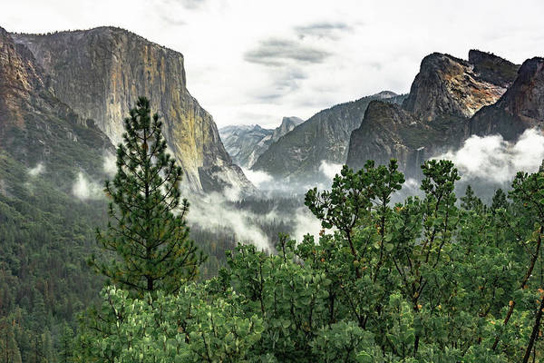 Photograph - Yosemite Valley 3 by Silvia Marcoschamer