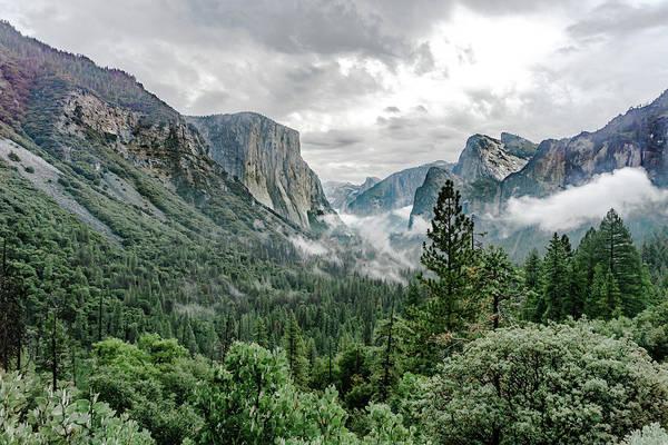 Photograph - Yosemite Valley 5 by Silvia Marcoschamer
