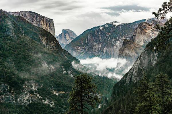 Photograph - Yosemite Valley 6 by Silvia Marcoschamer