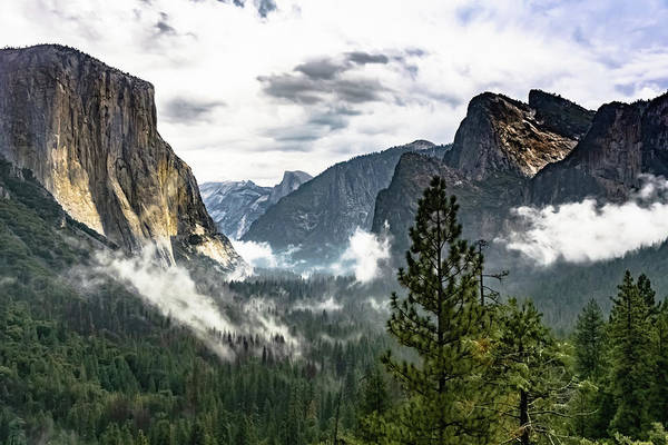 Photograph - Yosemite Valley 7 by Silvia Marcoschamer