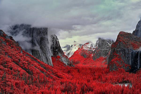 Photograph - Yosemite Valley In Red by Jon Glaser