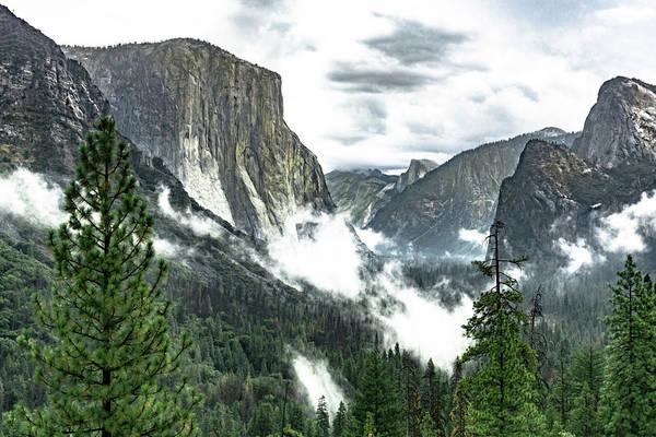 Photograph - Yosemite Valley by Silvia Marcoschamer