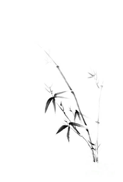 Single Leaf Mixed Media - Young Bamboo Bush With Leaves Oriental Zen Black And White Illus by Awen Fine Art Prints