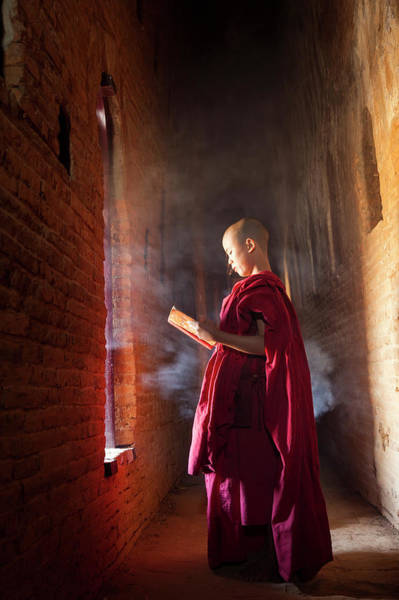 Shaved Head Photograph - Young Buddhist Monk Reading In Pagoda by Peter Adams
