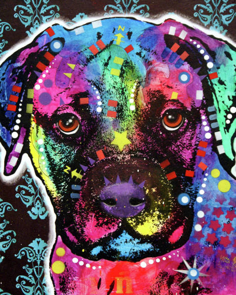 Wall Art - Painting - Young Bullmastiff by Dean Russo Art