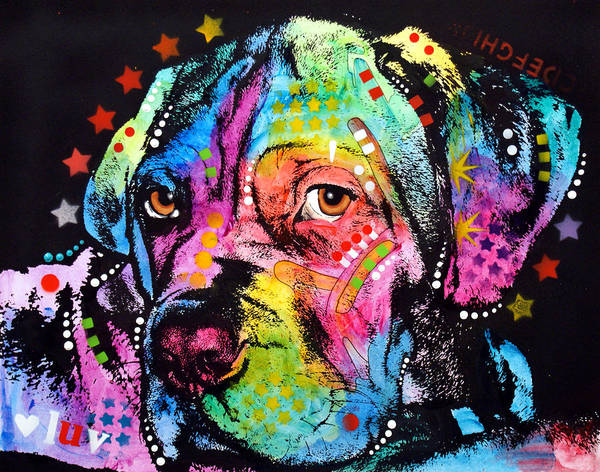 Mastiff Painting - Young Mastiff by Dean Russo Art