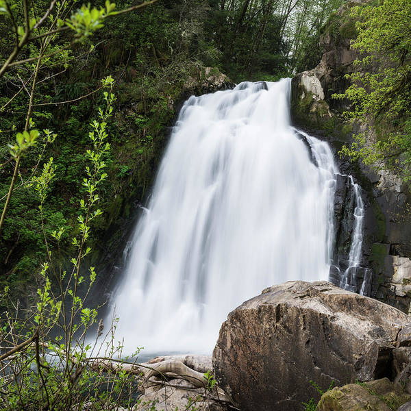 Photograph - Youngs River Falls In April by Robert Potts