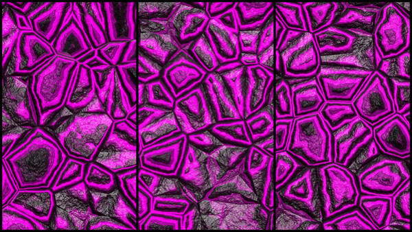 Digital Art - Zany Magenta Wall Abstract Triptych by Don Northup