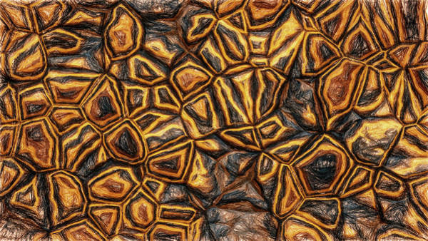 Digital Art - Zany Wall Abstract Pencil by Don Northup