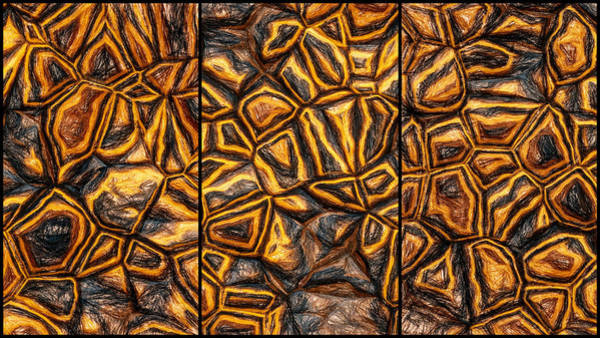 Digital Art - Zany Wall Abstract Pencil Triptych by Don Northup
