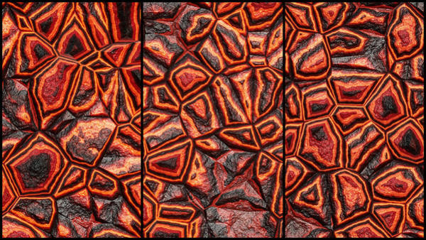 Digital Art - Zany Wall Funky Abstract Triptych by Don Northup