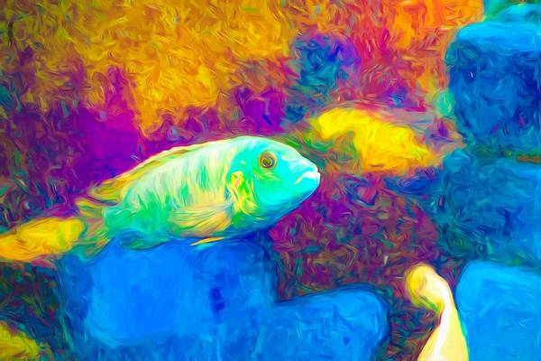 Digital Art - Zebra Cichlid Green Neon by Don Northup