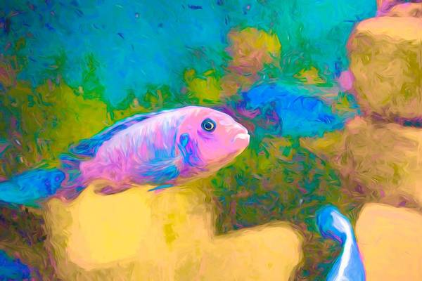 Digital Art - Zebra Cichlid Neon by Don Northup
