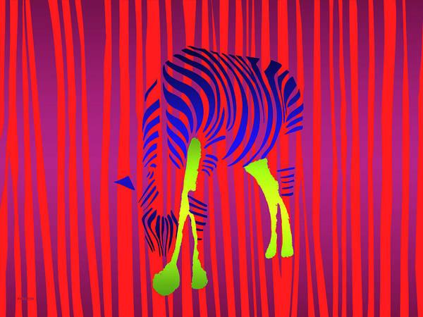Painting - Zebra by David Arrigoni