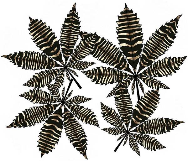 Drawing - Zebra Pattern Marijuana Leaf 5 by Joan Stratton