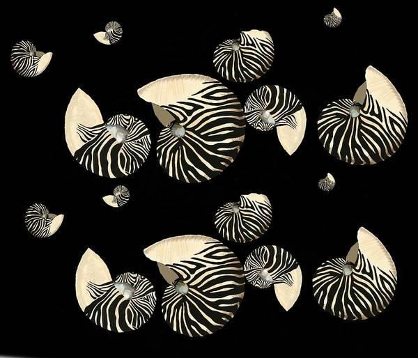 Digital Art - Zebra Pattern Nautilus Shells7 by Joan Stratton