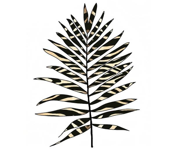 Drawing - Zebra Pattern Palm Leaf  by Joan Stratton