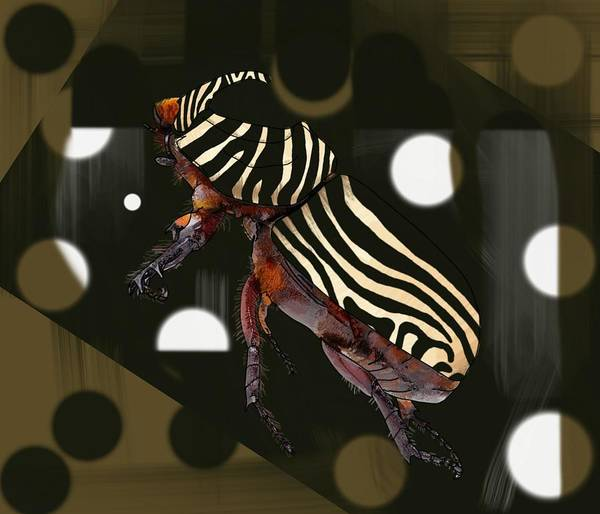 Wall Art - Drawing - Zebra Pattern Rhinoceros Beetle Patterned Background by Joan Stratton