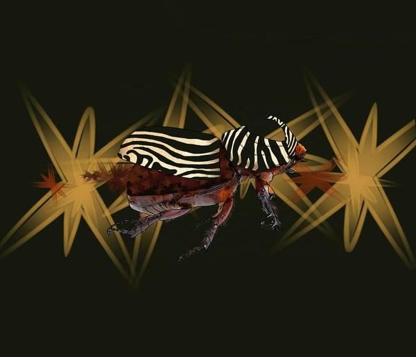 Drawing - Zebra Pattern Rhinoceros Beetle 7 by Joan Stratton