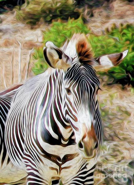 Digital Art - Zebra Rendition I by Kenneth Montgomery