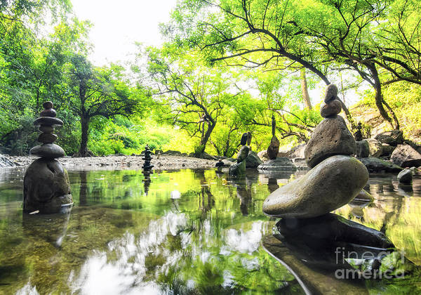 Zen Pond In Forest. Photography Of Art Print