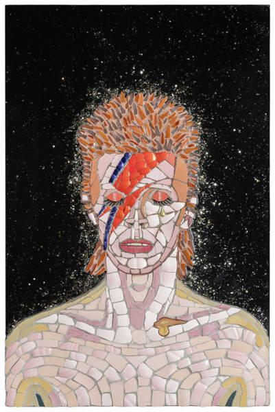 Spider Rock Mixed Media - Ziggy by Tony Cepukas