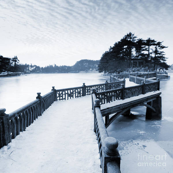 Wall Art - Photograph - Zigzag Bridge In The Lake by Zhangyang13576997233
