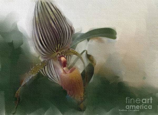 Digital Art - Lady Slipper Orchid by Kathie Chicoine