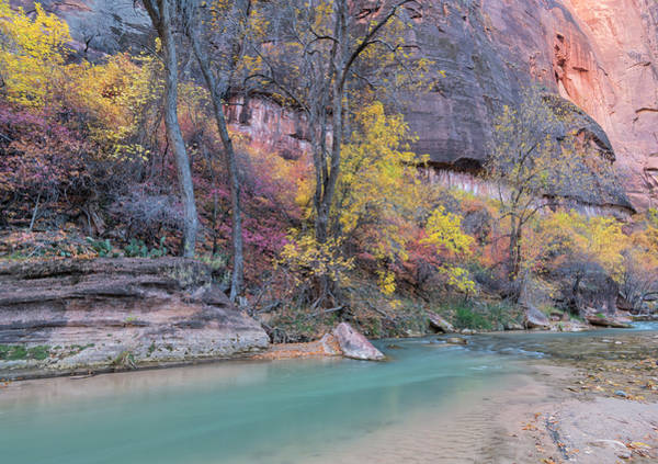 Photograph - Zion Canyon In Autumn by Loree Johnson
