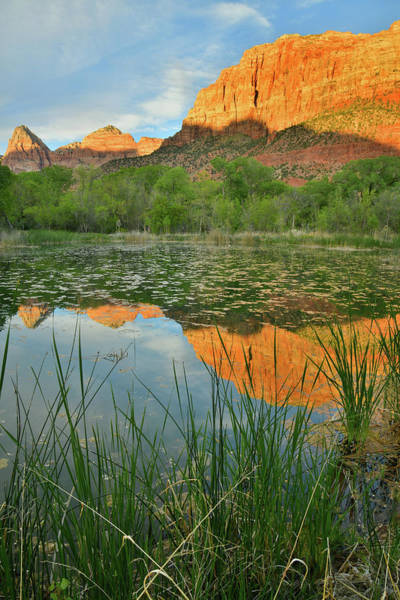 Photograph - Zion Canyon Mirror Image by Ray Mathis