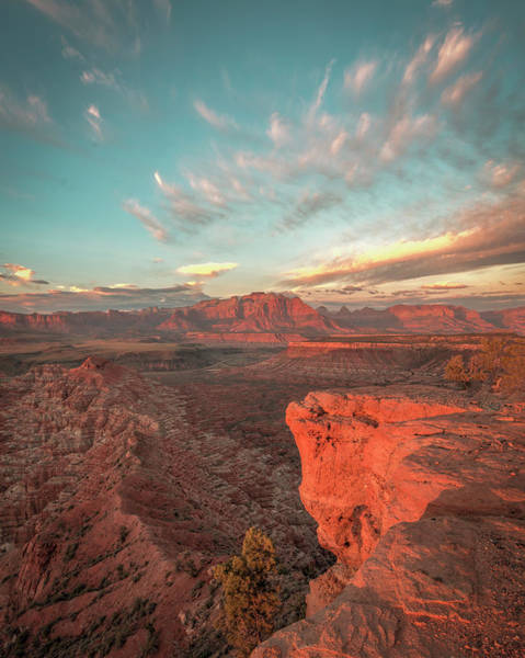 Photograph - Zion by Laura Hedien