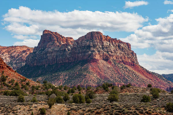 Photograph - Zion by Mark Duehmig