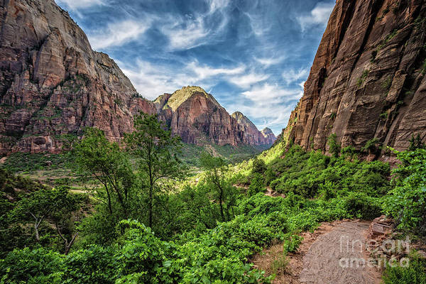 Wall Art - Photograph - Zion National Park Angels Landing Trail by Edward Fielding