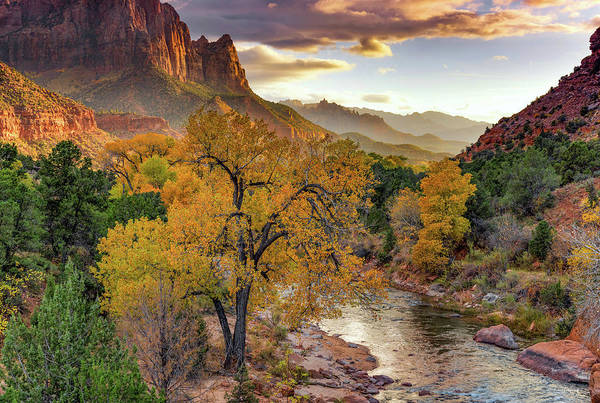 Photograph - Zion National Park Autumn by Leland D Howard