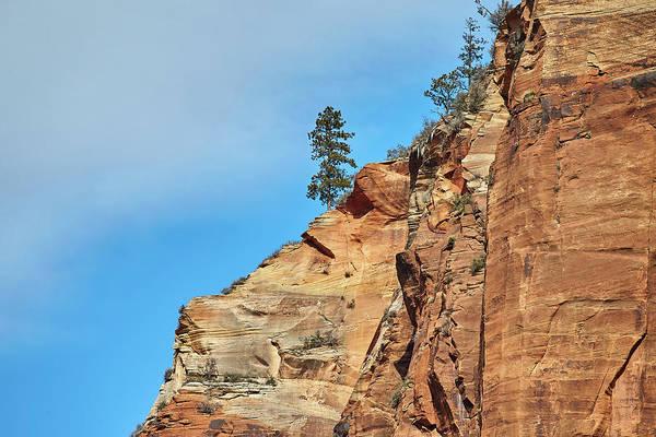 Photograph - Zion National Park by Steve Kaye