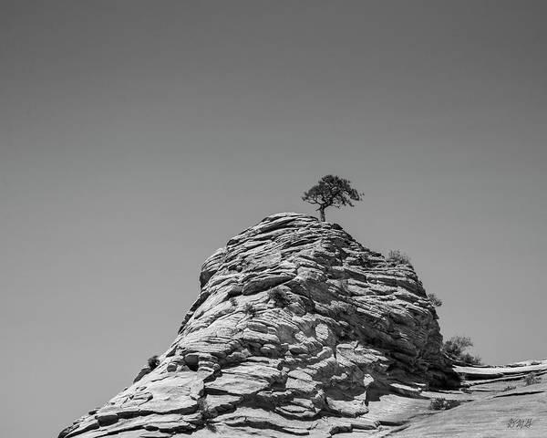 Photograph - Zion National Park Utah IIi Bw by David Gordon