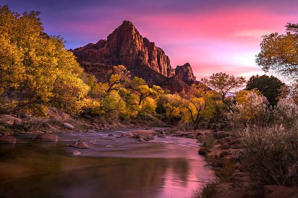Photograph - Zion Nightfire by Ryan Smith