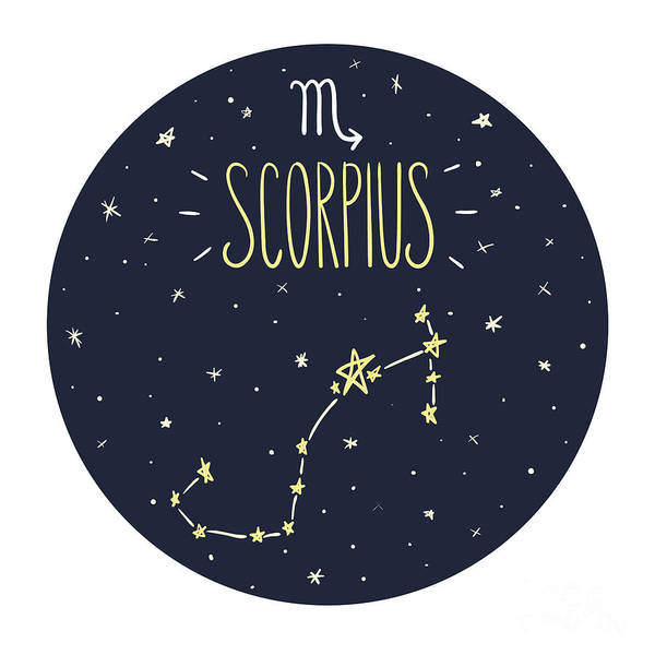 Wall Art - Digital Art - Zodiac Signs Doodle Set - Scorpius by Radiocat