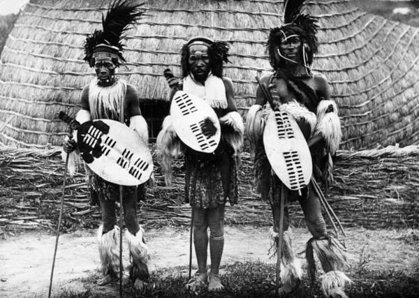 Indigenous People Photograph - Zulu Chiefs by Hulton Archive