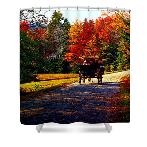 Acadia National Park Carriage Trail Fall  Shower Curtain