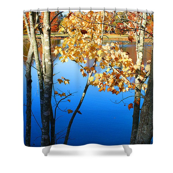 Autumn Trees On The Lake Shower Curtain